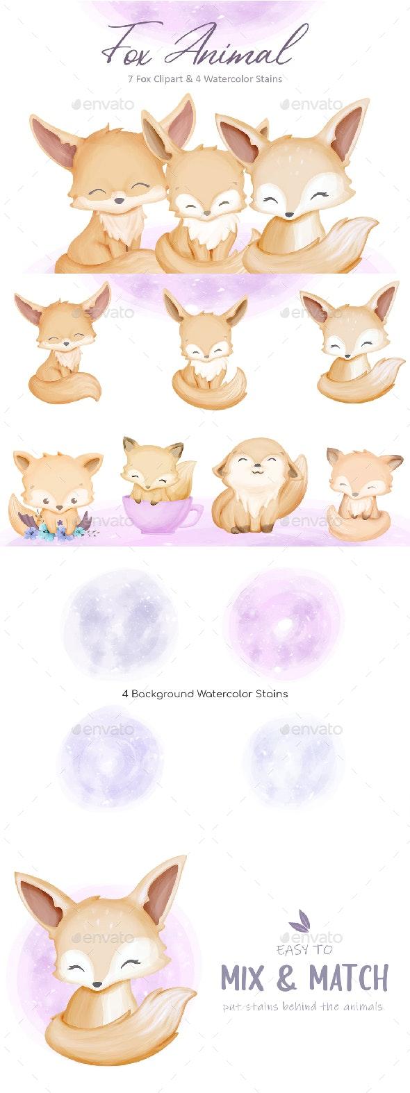 Fox Animal Collection - Animals Illustrations