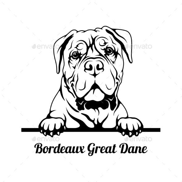 Peeking Dog  Bordeaux Great Dane Breed  Head - Animals Characters