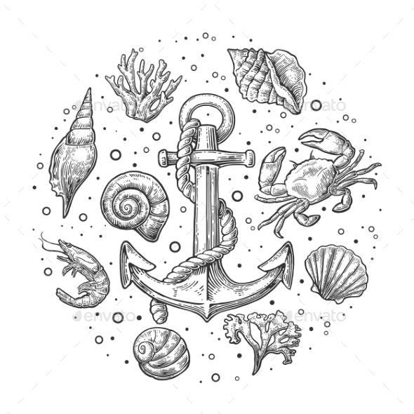 Set Sea Shell Coral Crab Shrimp and Anchor - Animals Characters