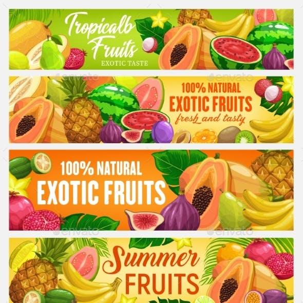 Fresh Vector Cartoon Fruits Banners