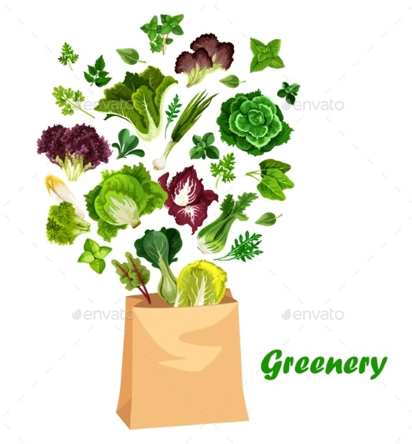 Greenery Salads and Greens in Vector Shopping Bag - Food Objects