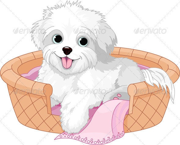 White fluffy dog - Animals Characters