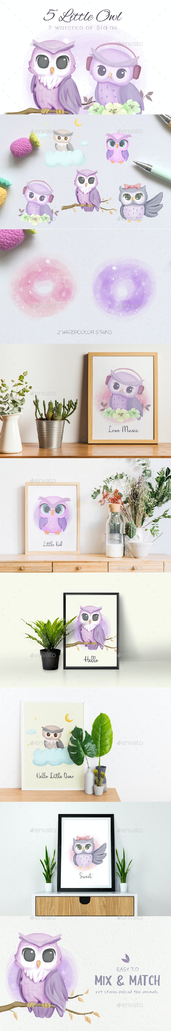 Little Owl Collection - Animals Illustrations