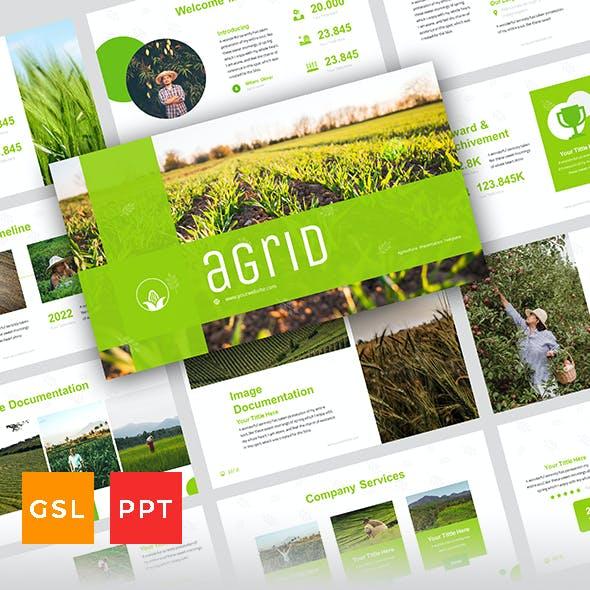 Agrid - Agriculture Presentation Template