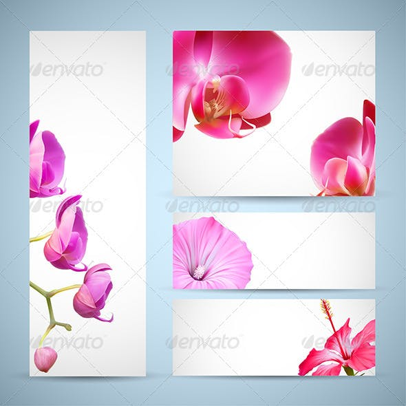 Background Templates with Orchid Flowers
