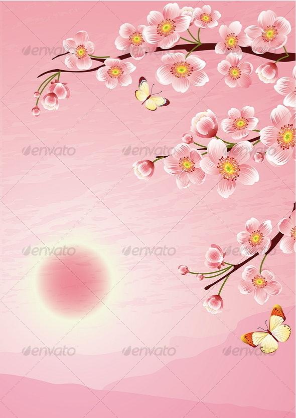 sakura - Seasons Nature