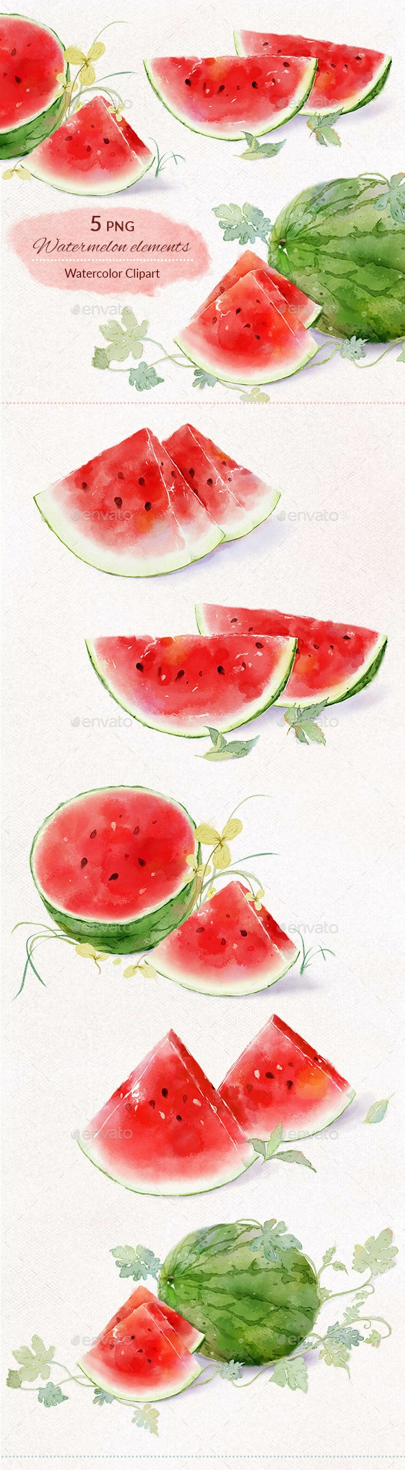 Watermelon Watercolor Digital Illustration Clipart PNG - Objects Illustrations