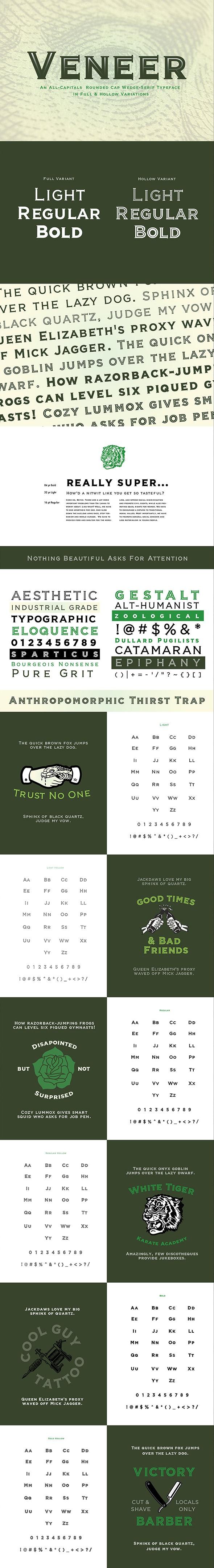 Veneer - Miscellaneous Serif