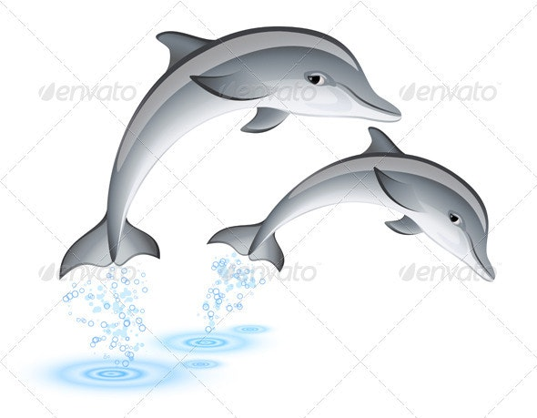 Jumping Dolphins - Animals Characters