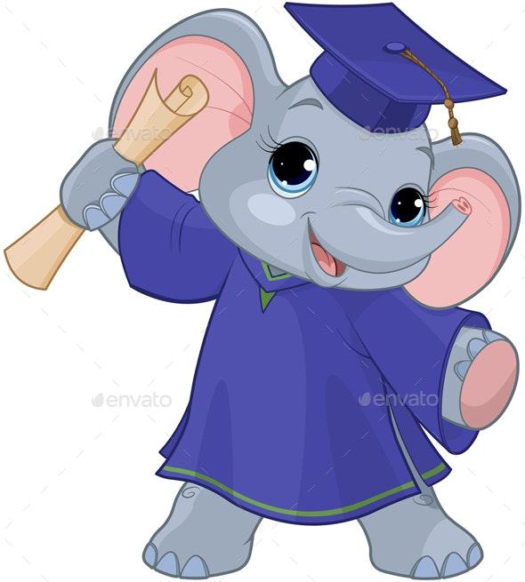 Elephant Graduates - Animals Characters