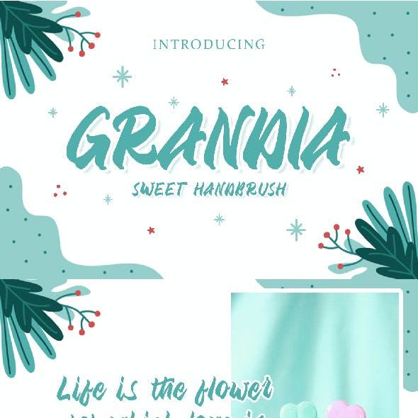 Grandia - Handbrush Font