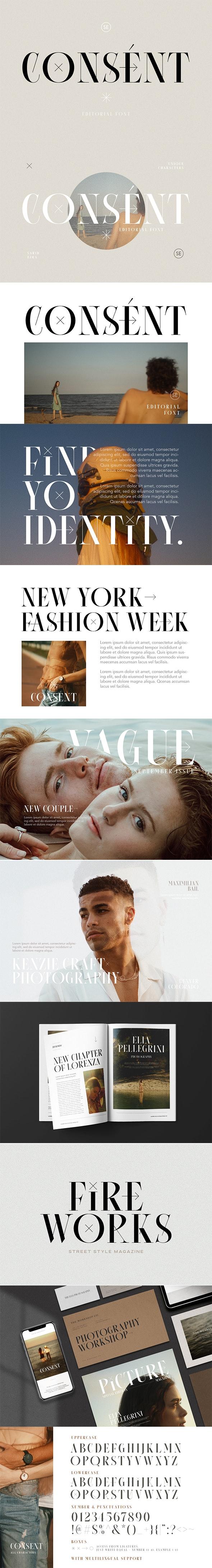 Consent - Editorial Serif Font - Serif Fonts