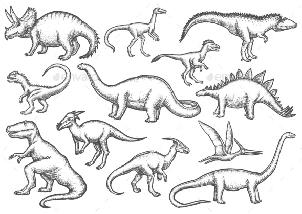 Set of Isolated Dinosaur Sketches - Animals Characters