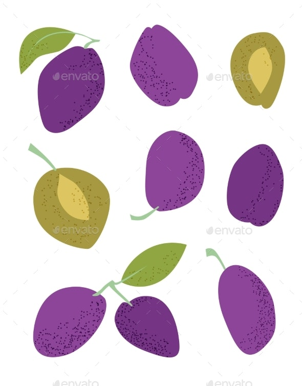 Blue Plums Flat on White Background - Food Objects