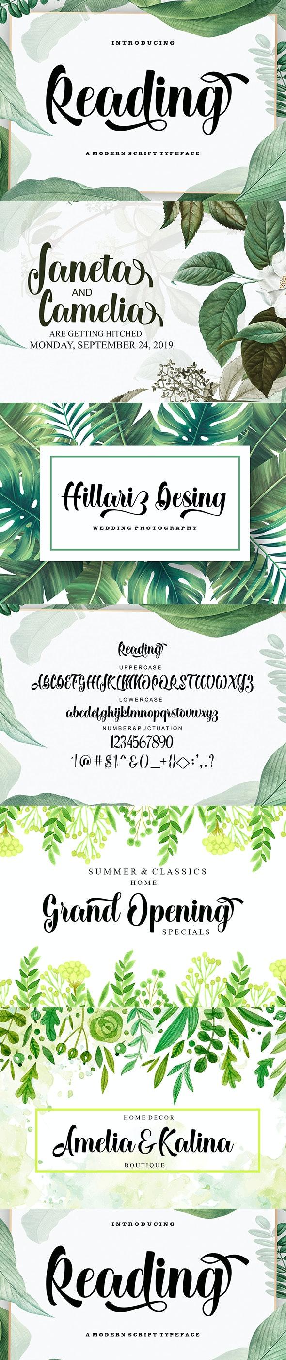 Reading - Script Fonts