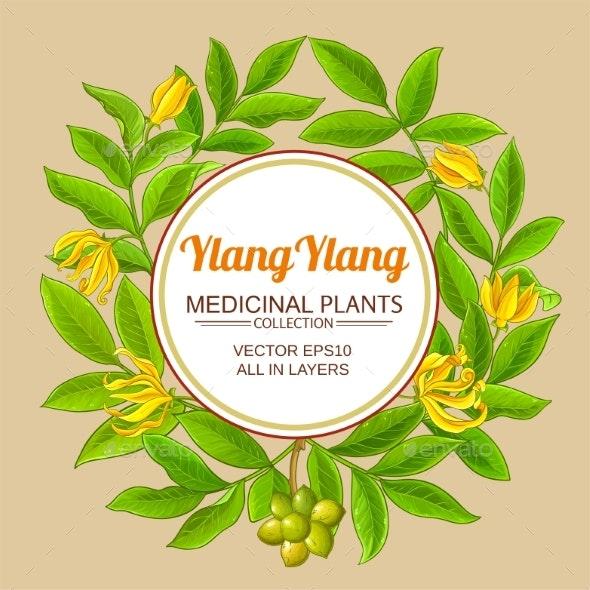 Ylang Ylang Circle Frame - Health/Medicine Conceptual