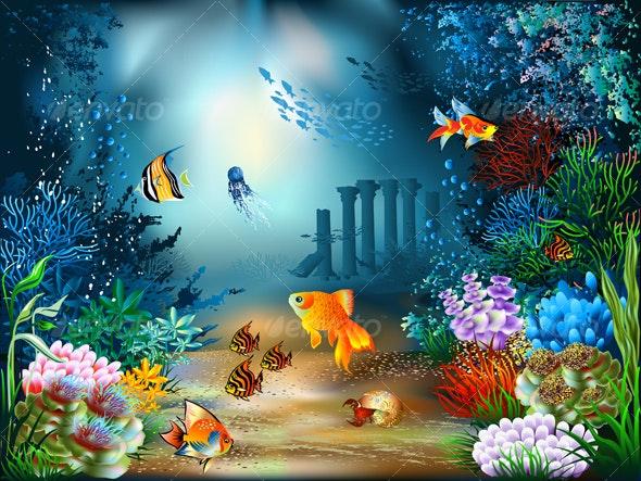 Underwater World - Landscapes Nature