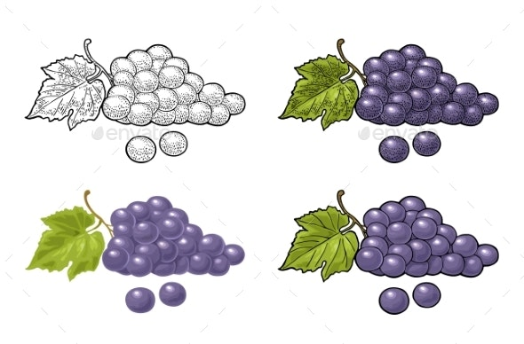 Bunch of Grapes with Berry and Leaves - Food Objects