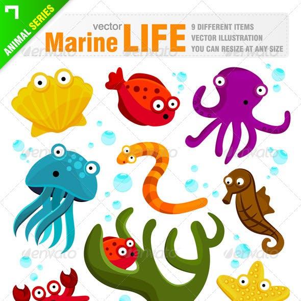 Marine / Sea Life