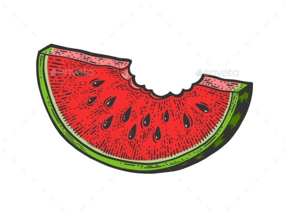 Bitten Watermelon Sketch Vector Illustration - Food Objects