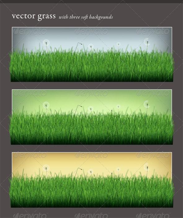 Vector Grass - Nature Conceptual