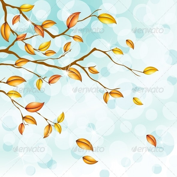 Autumn Foliage Background - Seasons/Holidays Conceptual
