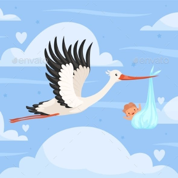 Stork with Baby in Clouds