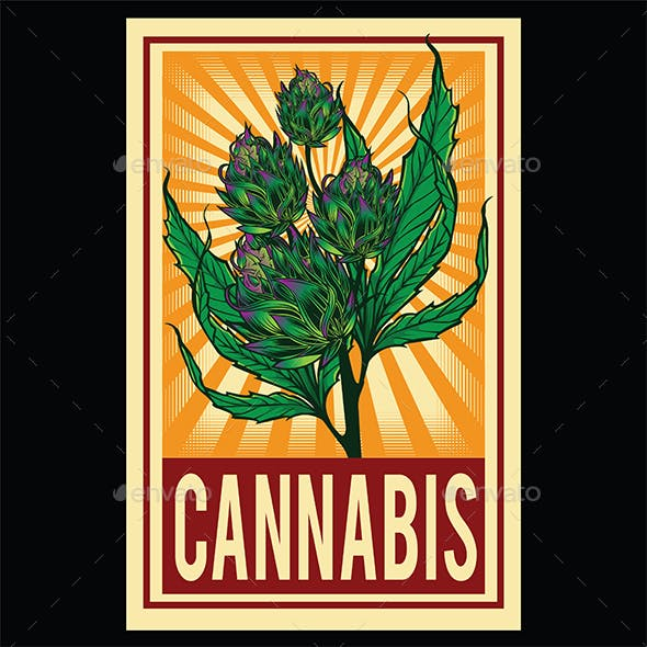 Marijuana Narcotic Cannabis Leaf Color Poster Sketch Engraving