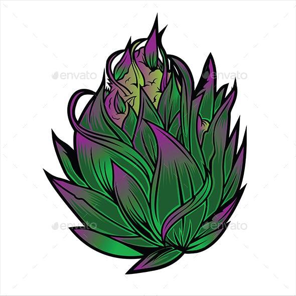 Marijuana Narcotic Cannabis Leaf Color Sketch Engraving