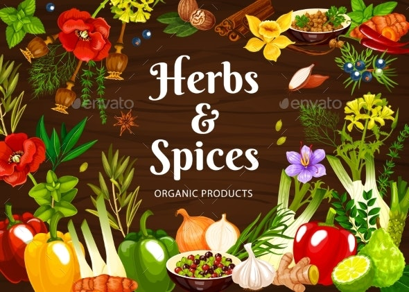Herbs and Spices Cartoon Vector Poster Seasonings - Food Objects