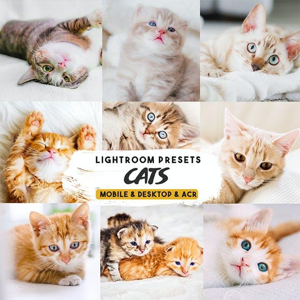Cats Lightroom Presets