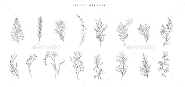 Floral Branch - Flowers & Plants Nature