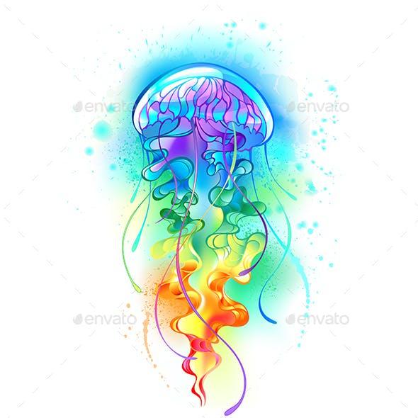 Large Rainbow Jellyfish