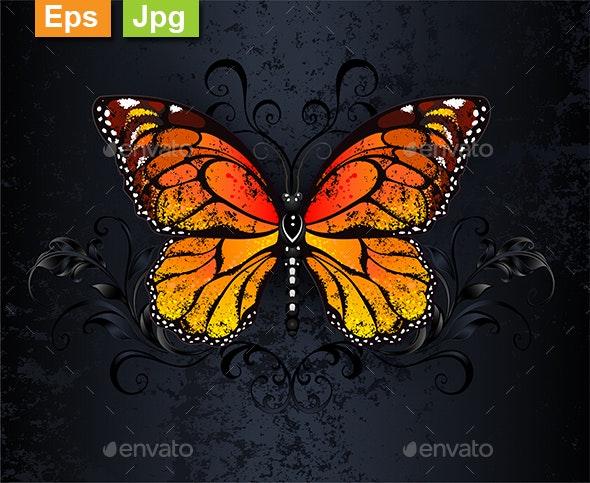 Monarch Butterfly on Gothic Background - Animals Characters