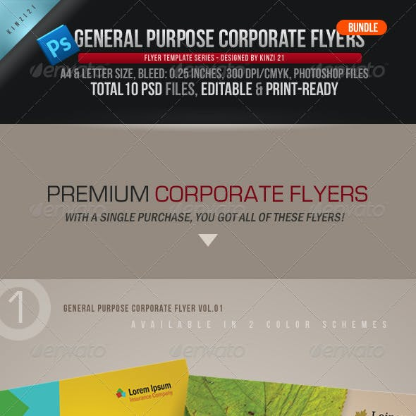 General Purpose Corporate Flyer Bundle