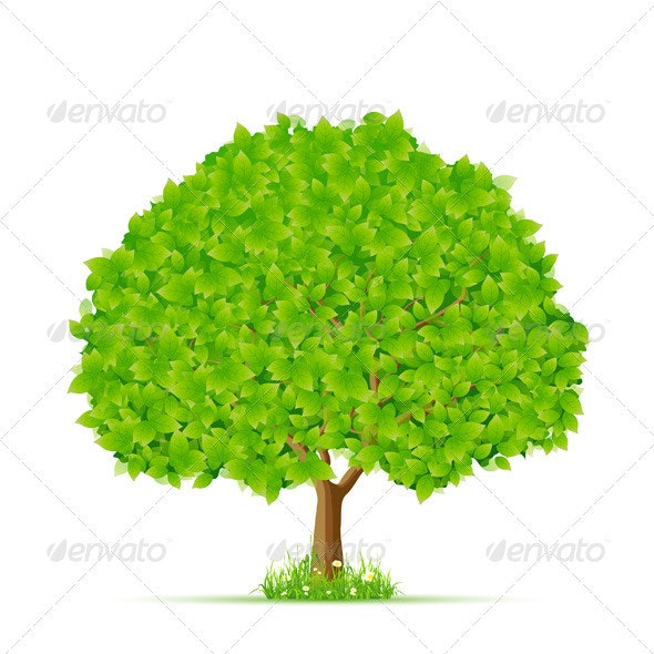Isolated Green Tree with Grass and Flowers - Flowers & Plants Nature