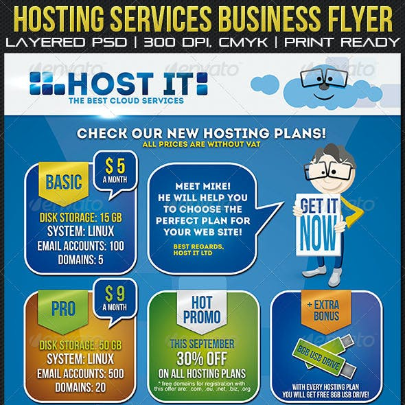 Hosting Services Business Flyer/ Poster