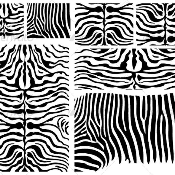Vector Zebra Skin