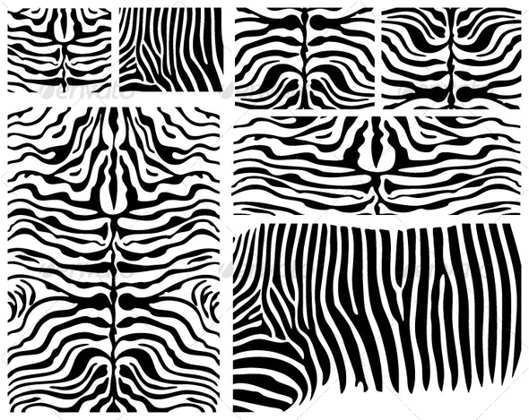 Vector Zebra Skin - Patterns Decorative