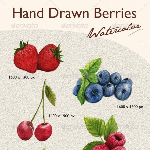 Hand Drawn Berries