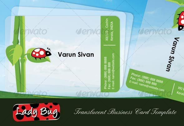 Lady Bug Translucent Business Card - Creative Business Cards