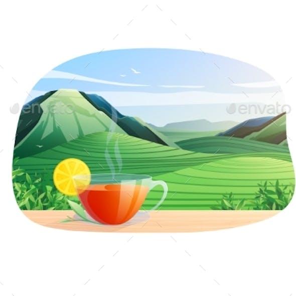 Tea Nature Landscape Composition