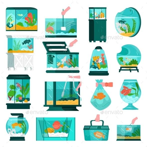 Aquarium Fish and Accessories Wildlife at Home - Animals Characters