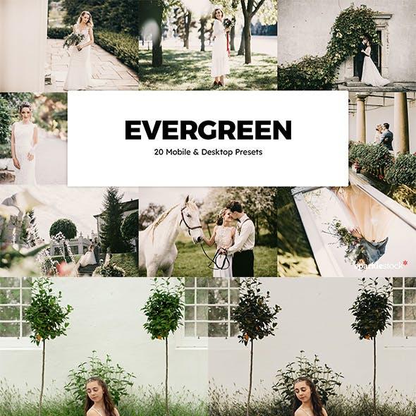 20 Evergreen Lightroom Presets & LUTs