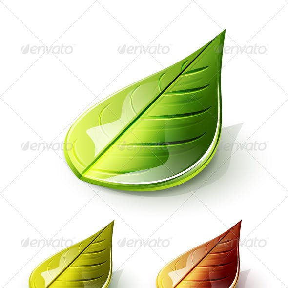 Glossy 3d Vector Leaves
