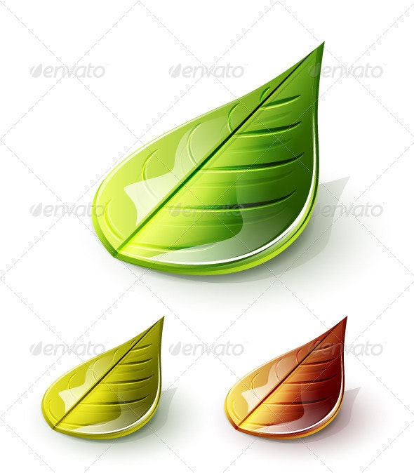 Glossy 3d Vector Leaves - Nature Conceptual