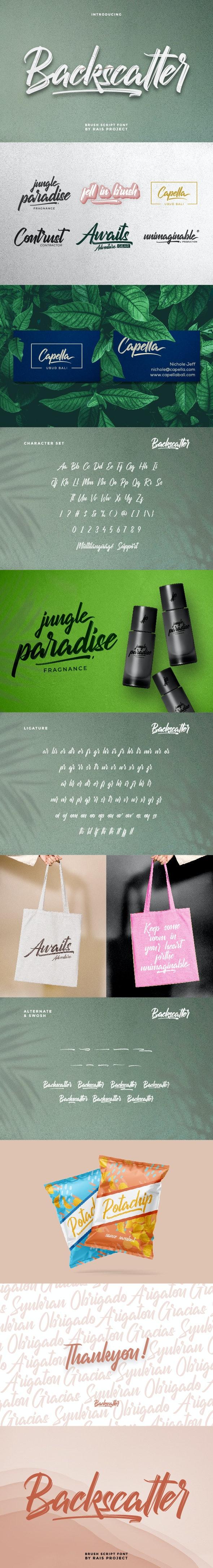 Backscatter Brush Script Font - Decorative Fonts