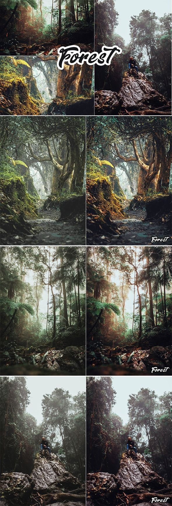 Forest Photoshop Action - Photo Effects Actions