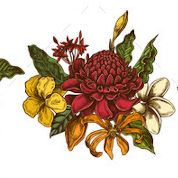 Flower Bouquet of Colored Plumeria Allamanda