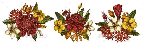 Flower Bouquet of Colored Plumeria Allamanda - Flowers & Plants Nature